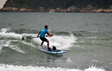 Shark Paddle Surf