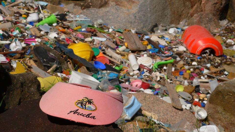 Dia Mundial de Limpeza