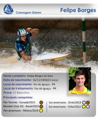 Perfil Felipe(1)